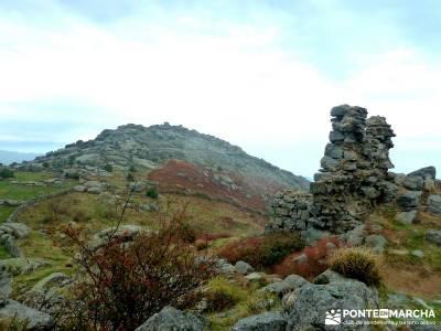 Castillo de Viriato-Sierra San Vicente - El Piélago;cerezo en flor valle del jerte el tiemblo casta